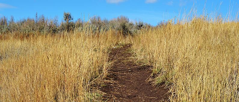 MRE Trail8